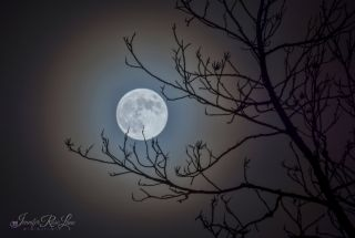 The full moon of March 23, 2016, shines brightly in this image taken in Chapmanville, West Virginia, by photographer Jennifer Rose Lane.
