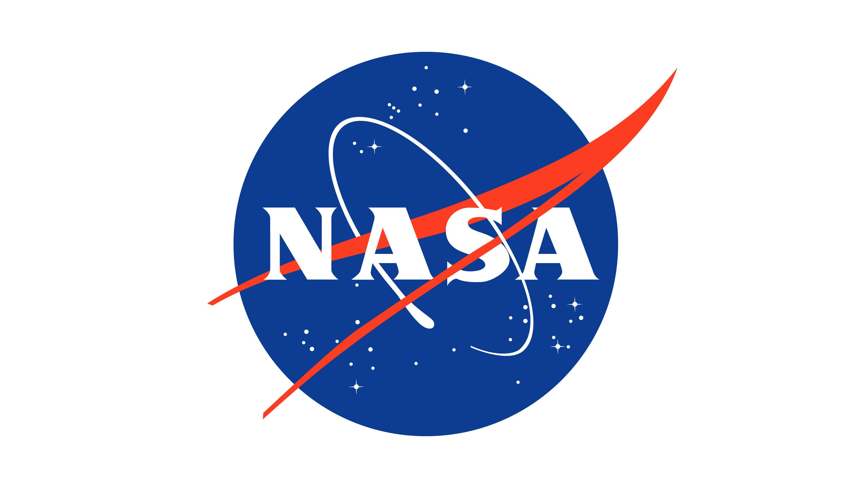NASA logo: the meatball vs the worm | The Blog Pros