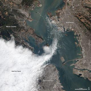San Francisco Fog Satellite Image