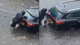 dog pushes car down flooded street