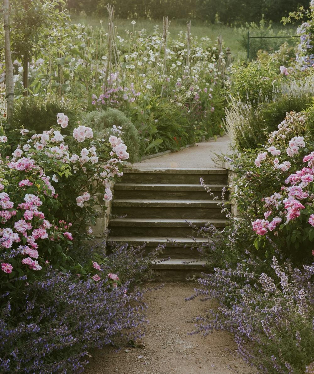 Eva Nemeth; garden by Libby Russell