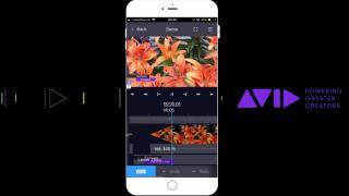 Avid MediaCentral | Reporter app
