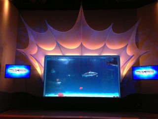 Full Spectrum Chooses Alcorn McBride Equipment for Newport Aquarium