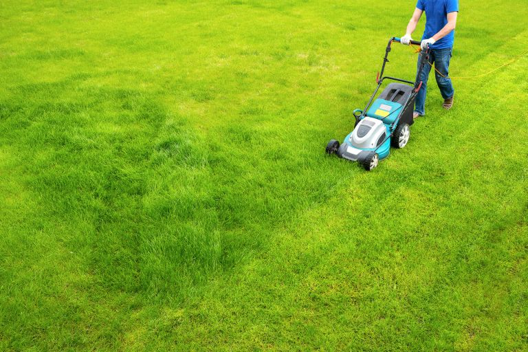 the best electric lawn mower being used on a front lawn