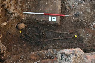 skeleton of what may be king richard iii
