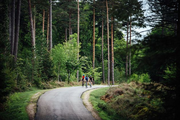 Wiggle New Forest 100 preview