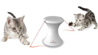 best interactive cat toys
