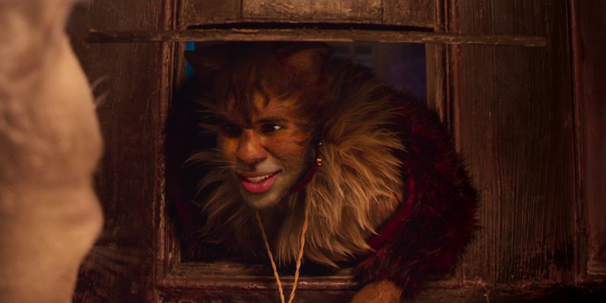Cats Jason Derulo popped out through a cat door
