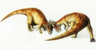 dinosaurs, dinos