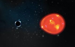 """Artist's illustration of the tiny black hole candidate known as """"The Unicorn"""" tugging on its companion, a red giant star."""