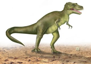 T Rex Could Outrun Humans Live Science