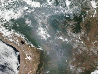 As Fires Devastate the Amazon Rainforest, NASA Satellites Capture Grim Images