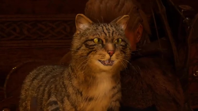 Yes, you can pet the hefty Viking cats in Assassin's Creed Valhalla