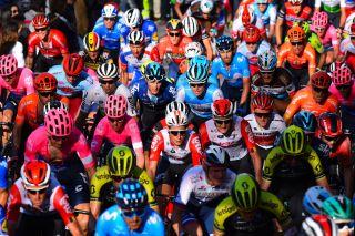 The WorldTour peloton