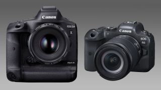 Canon EOS R6 and 1D X Mark III get big time video updates