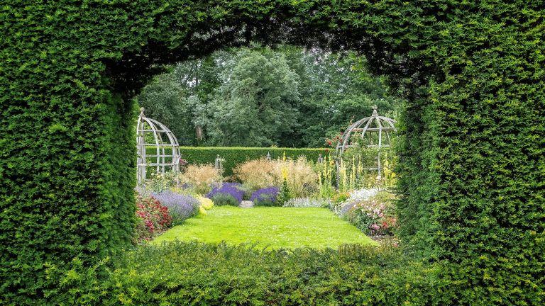 hedge window in large garden