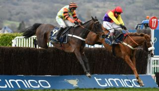 watch cheltenham live