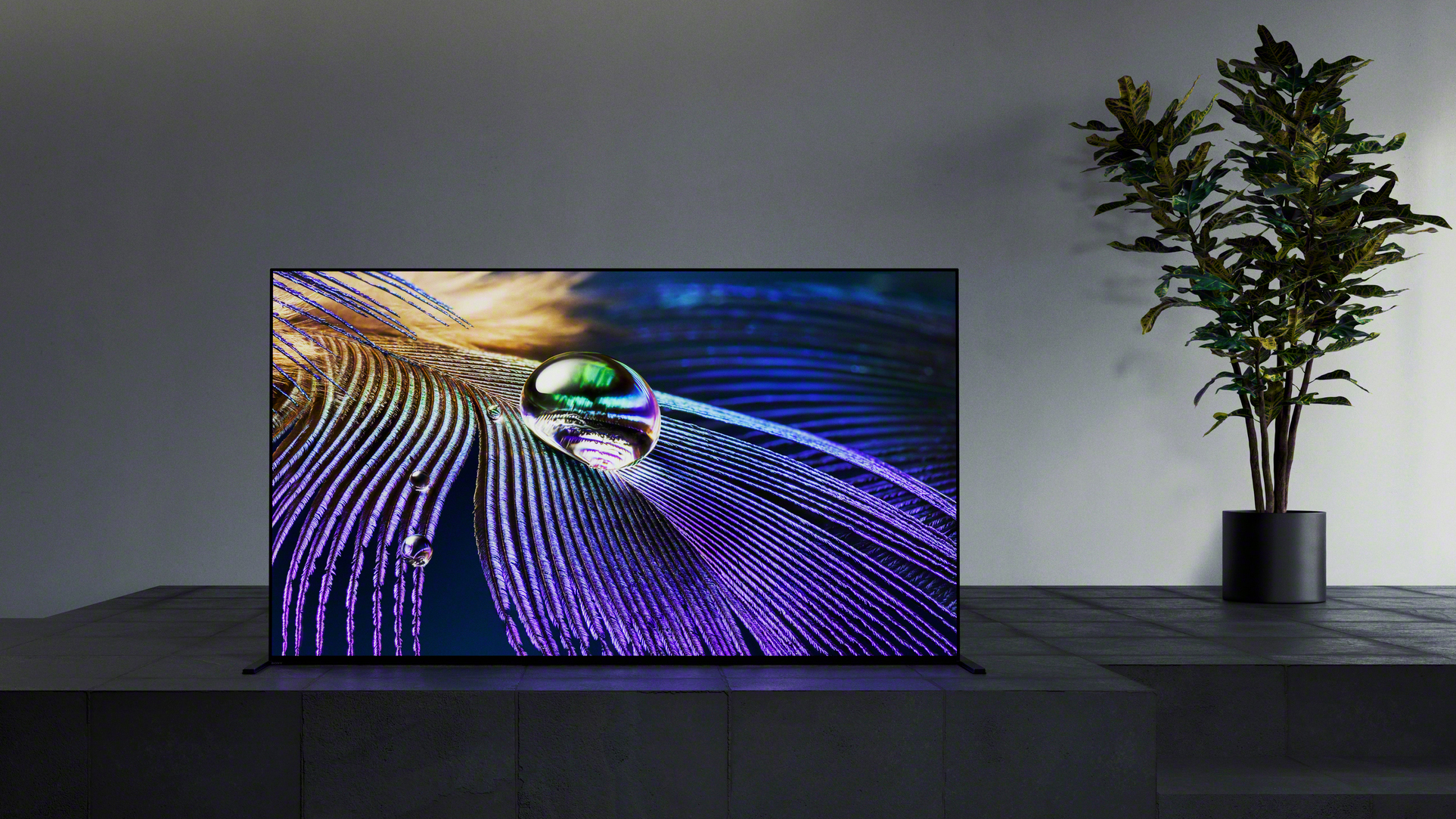 Sony 2021 TV Lineup — Sony Master Series A90J OLED TV