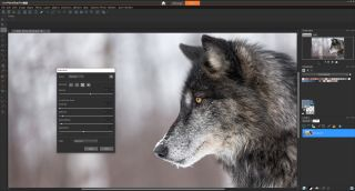 Best Lightroom Presets 2020 PaintShop Pro 2020 Ultimate brings new tools and a new way to get