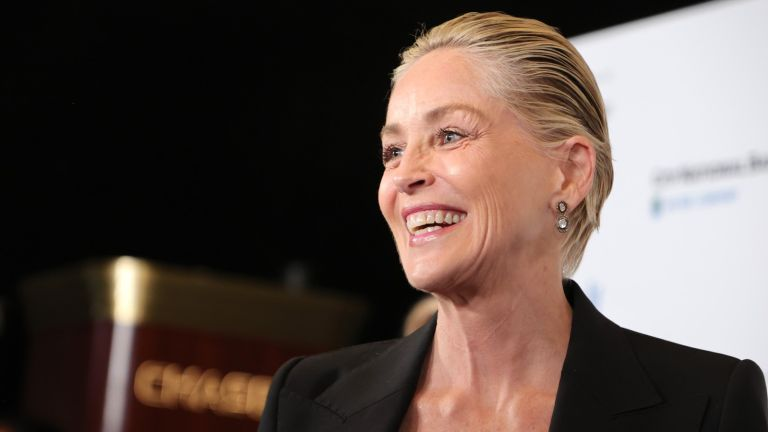Sharon Stone shuts down question about working with meryl streep