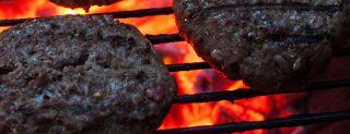grill, meat, heat, foodborne diseasess