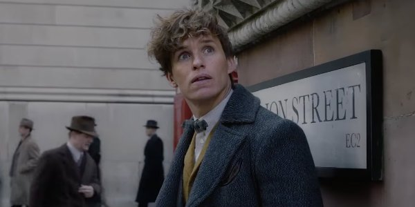 New Scamander Fantastic Beasts 2