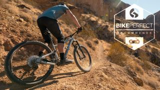 Best trail bikes for beginners