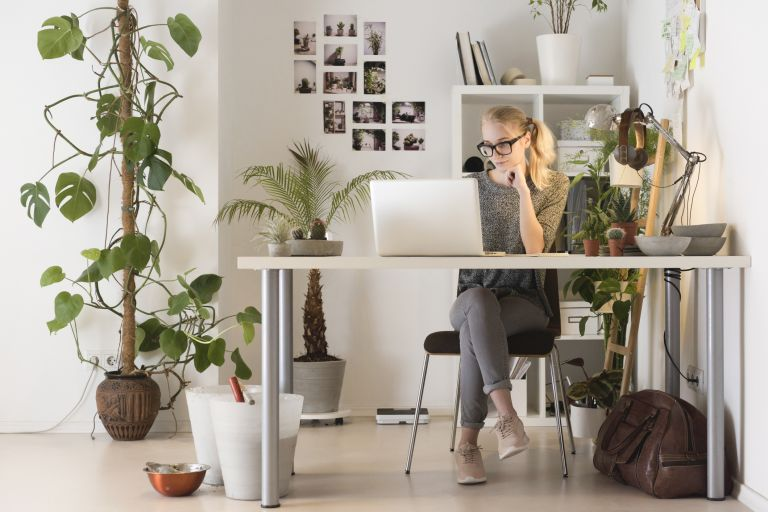 Full length of creative businesswoman using laptop in office, plants for an office desk