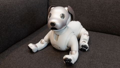 Sony Aibo Review: What It's Like To Live With a $2,900 Robot
