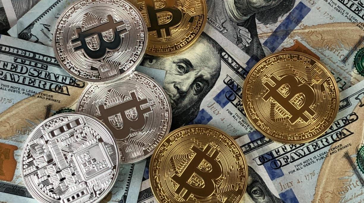 Bitcoin | Websites schießen wie Pilze aus der Erde – metromaredellostretto.it