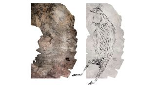 A montage of 39 photographs of the 17,300 year old kangaroo, next to an illustration of the painting.