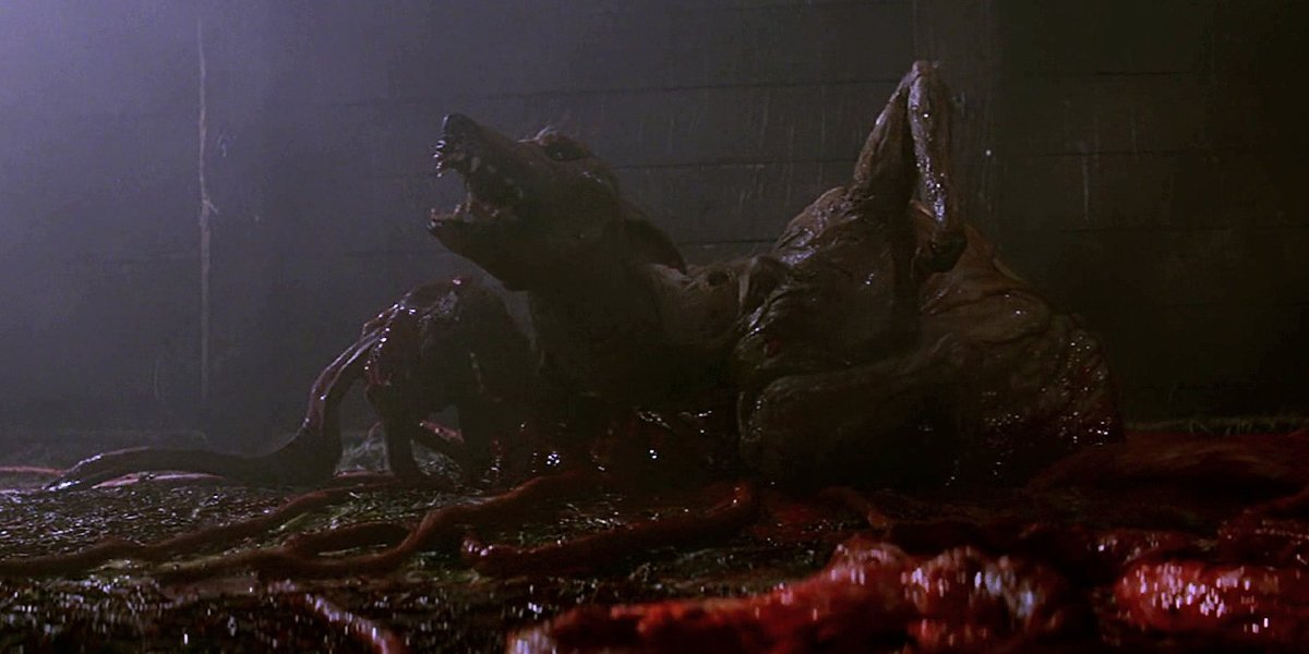 The Dog-Thing in The Thing