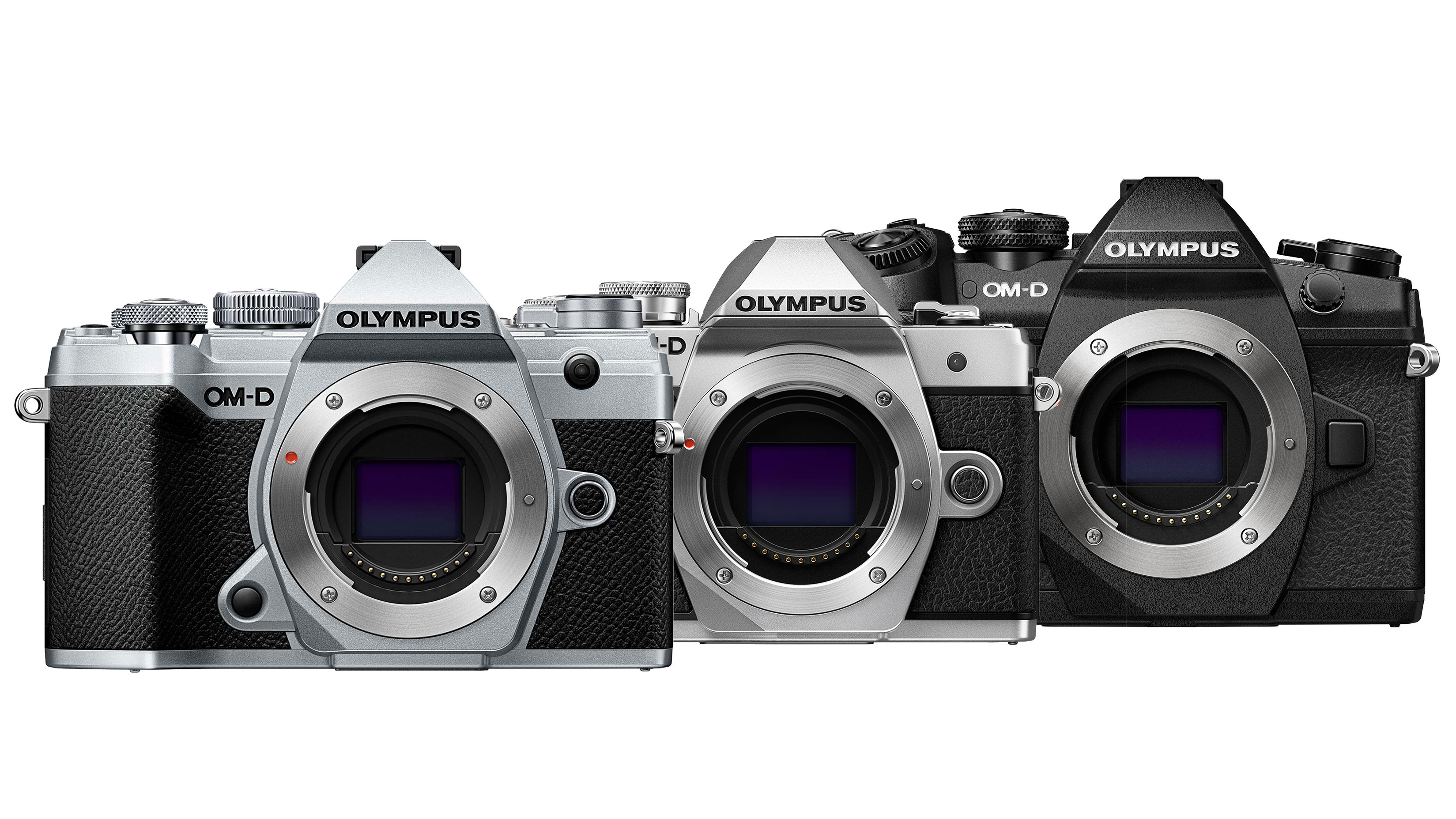 Olympus OM-D E-M10 III vs E-M5 III vs E-M1 II: which OM-D is right for you? | Digital Camera World