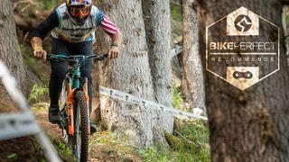 Best mountain bike forks