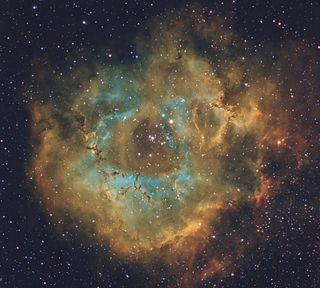 Rosette Nebula by Steve Coates
