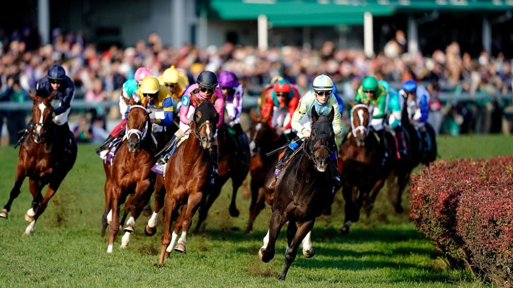How To Watch Breeders Cup 2019 Live Stream The Racing