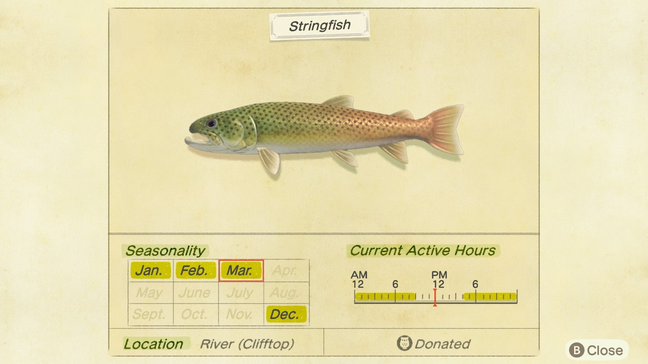 How To Catch Stringfish In Animal Crossing New Horizons Gamesradar You will see how to do basic animation. how to catch stringfish in animal