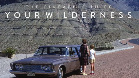 The Pineapple Thief album artwork for Your Wilderness