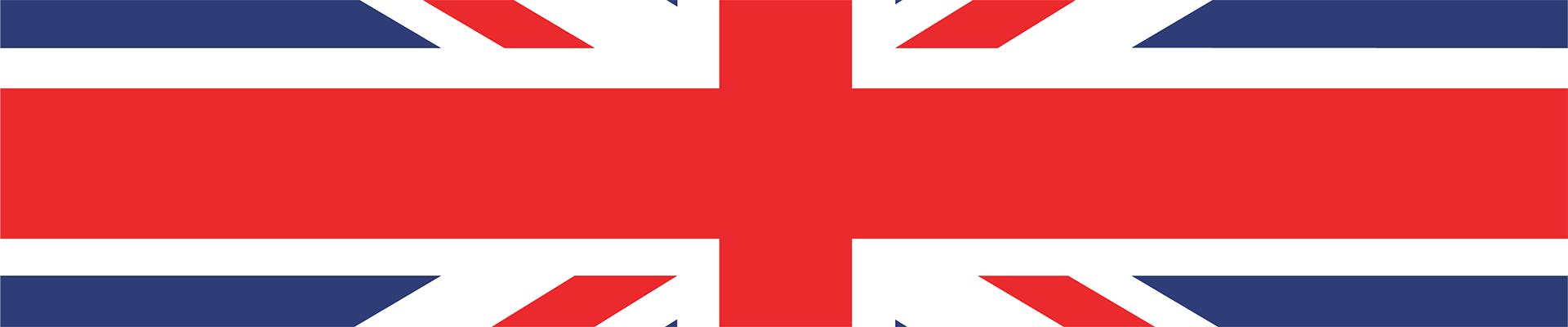 how to watch Netherlands vs Czech Republic live stream — British flag