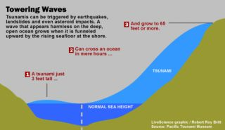 How tsunamis grow larger at the shore.