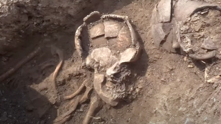 The causes of the ancient settlers' deaths are not yet known.