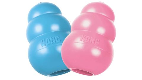 Kong Puppy Toy review