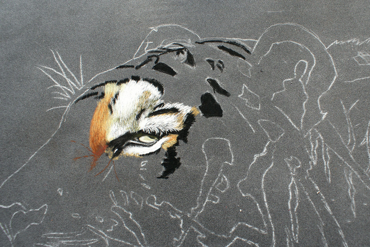 sketch of tiger with eyes filled in