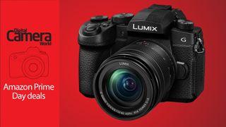 Panasonic Lumix G95 with 12-60mm lens