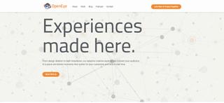 OpenEye Global Website