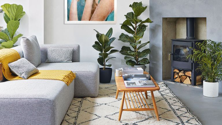 Grey living room with plants