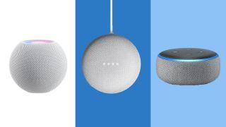 HomePod Mini vs Echo Dot vs Nest Mini: Which is the best mini smart speaker?