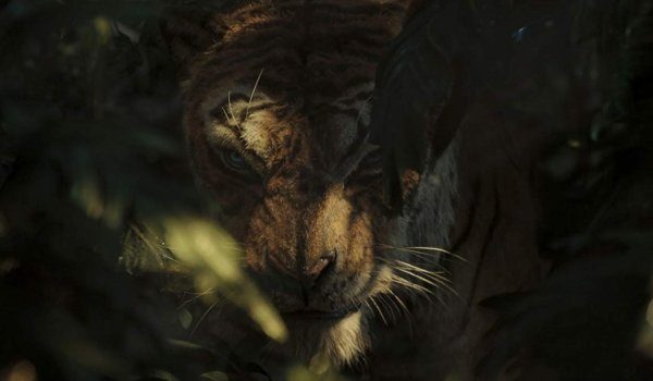 Mowgli: King of the Jungle Shere Khan lurks in the jungle