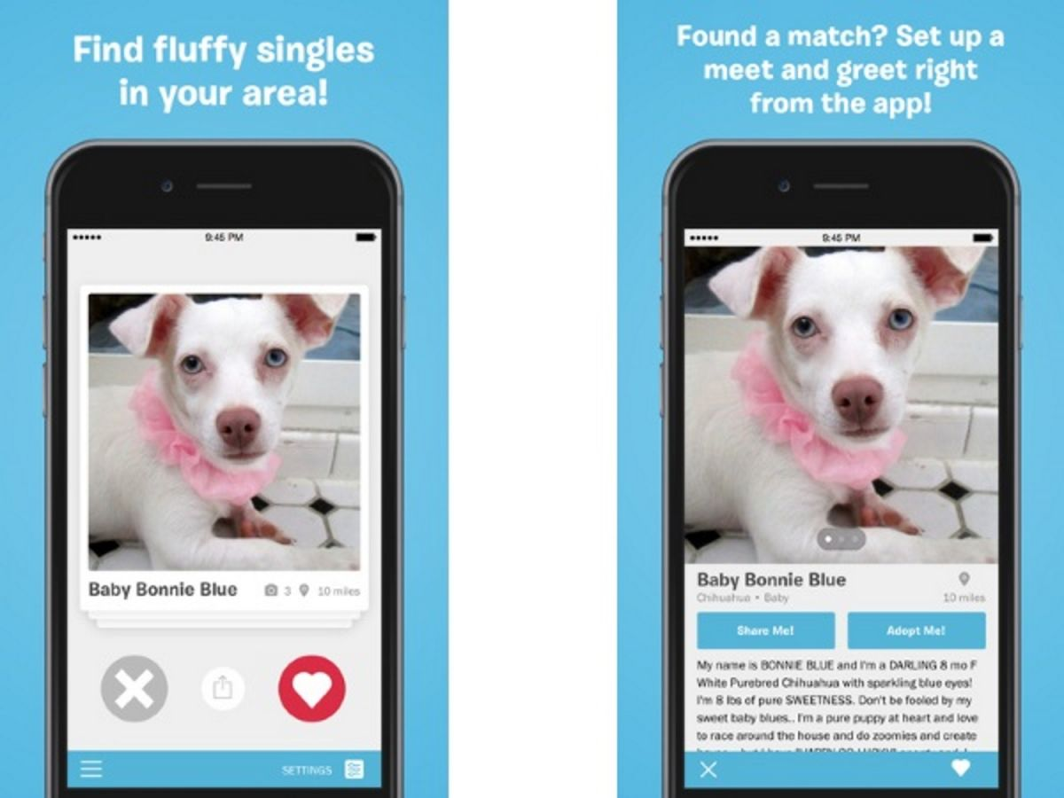 20 Apps for Pet Lovers | Tom's Guide
