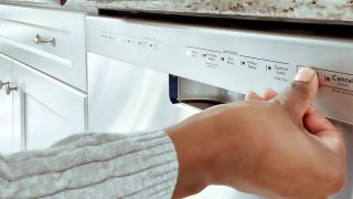 Can you put dish soap in a dishwasher? Image of a person using controls for dishwasher